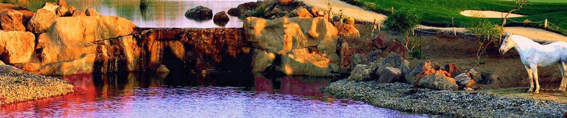 Desert Springs Course