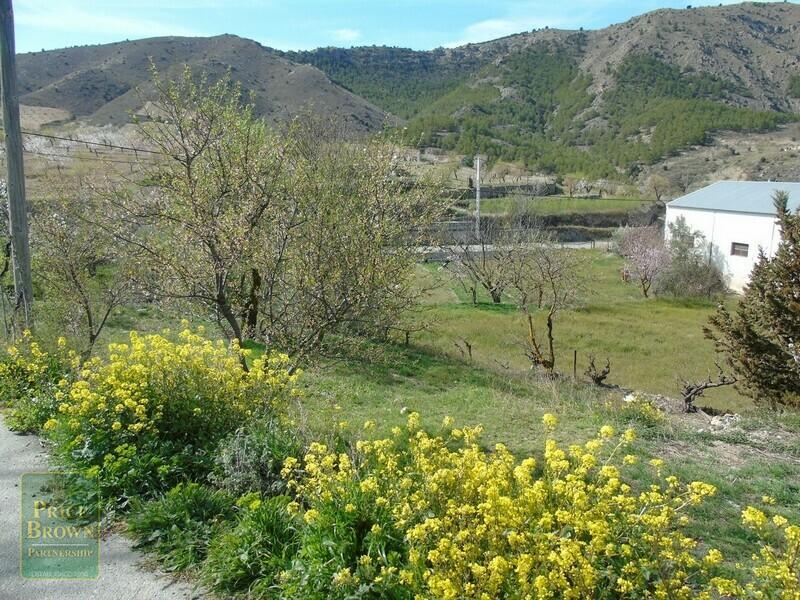 AF653: Land for Sale in Oria, Almería