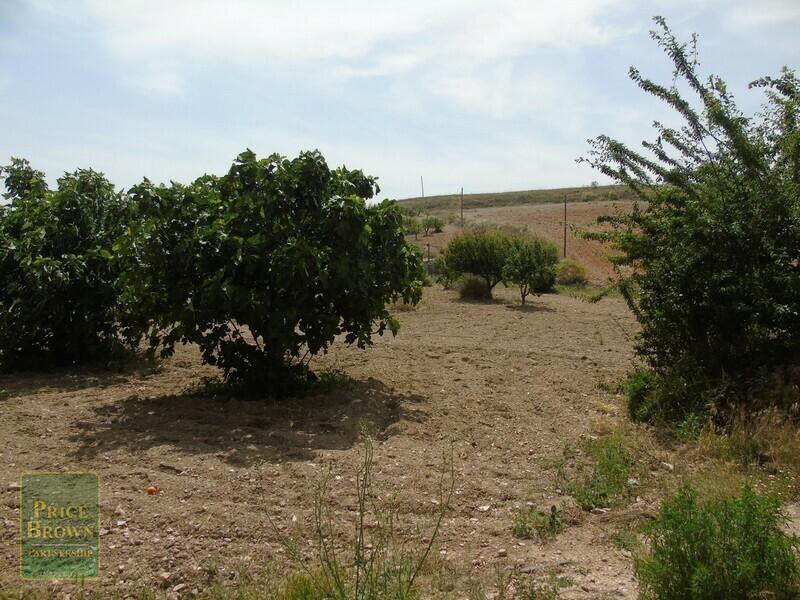 AF816: Commercial Property for Sale in Los Cerricos, Almería